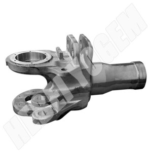Differential mechanism support